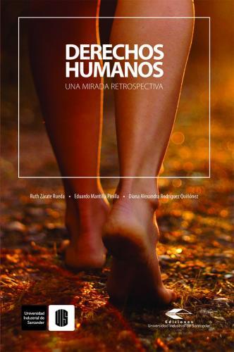 Cubierta para Derechos humanos: una mirada retrospectiva