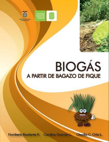 Cubierta para Biogás a partir del bagazo del fique